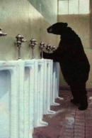 Cu cine nu credeai ca ai sa te intalnesti la toaleta