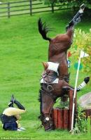 Cum face calul lumanarea in cap