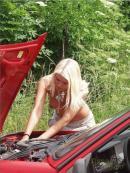 Cum se repara masina pe canicula