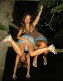 Pasarica din copac