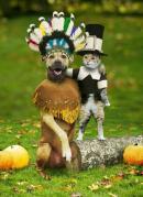 Prieteni de Thanksgiving
