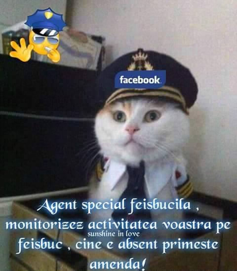 Agent FB
