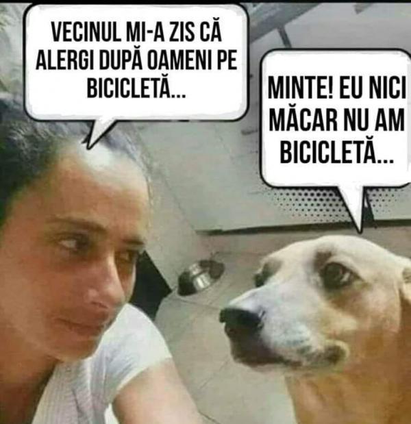 Cainele cu bicicleta