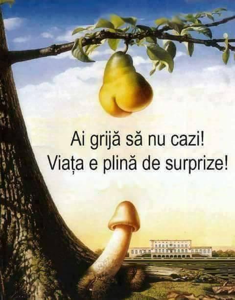 Viata e plina de surprize!