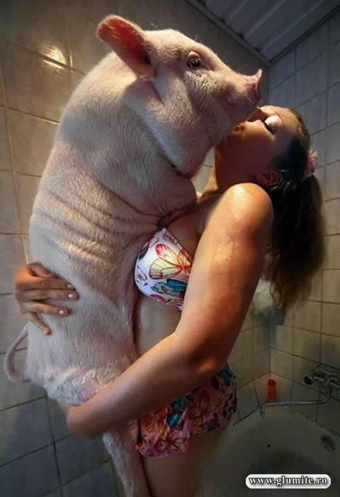 Femeile se plang ca barbatii sunt porci. Dar lor le plac porcii!
