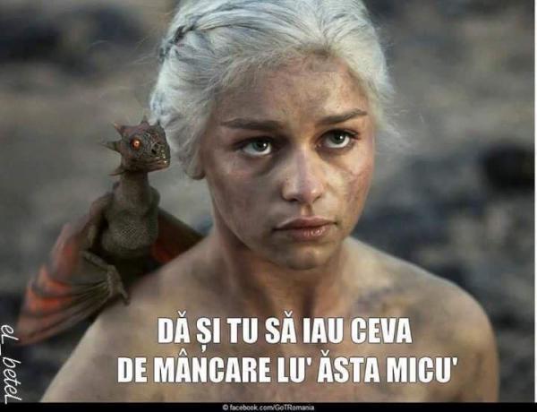 Mama dragonilor